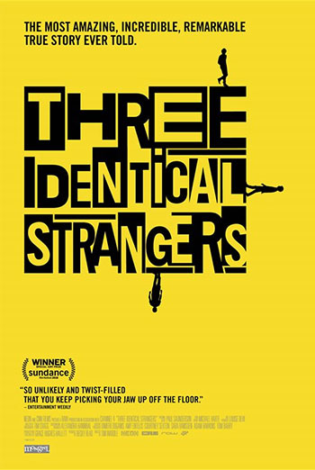 Three Identical Strangers - in theatres 07/20/2018