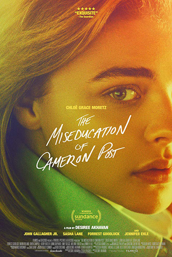 Miseducation Of Cameron Post, The movie poster