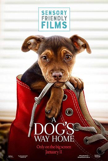 Dog's Way Home, A  (Sensory Friendly) movie poster