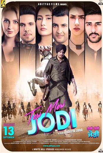 Teri Meri Jodi (Punjabi W/E.S.T.) movie poster